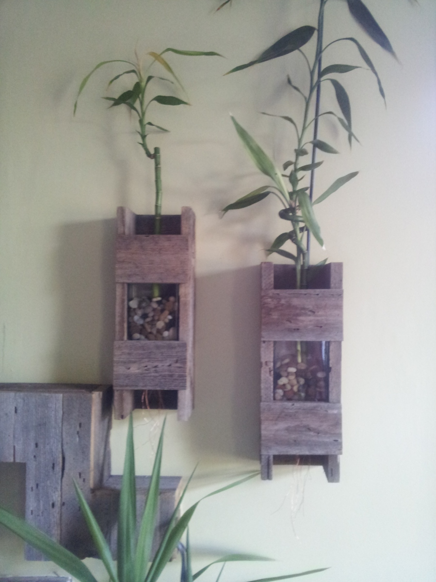Side by side hanging wall planters.